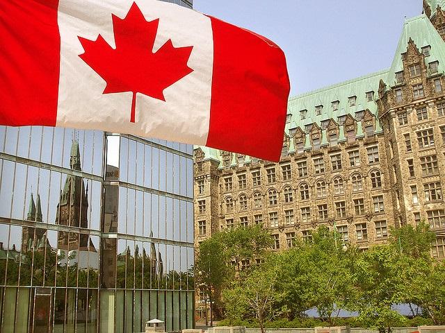 Vince_Alongi_-Canada.jpg