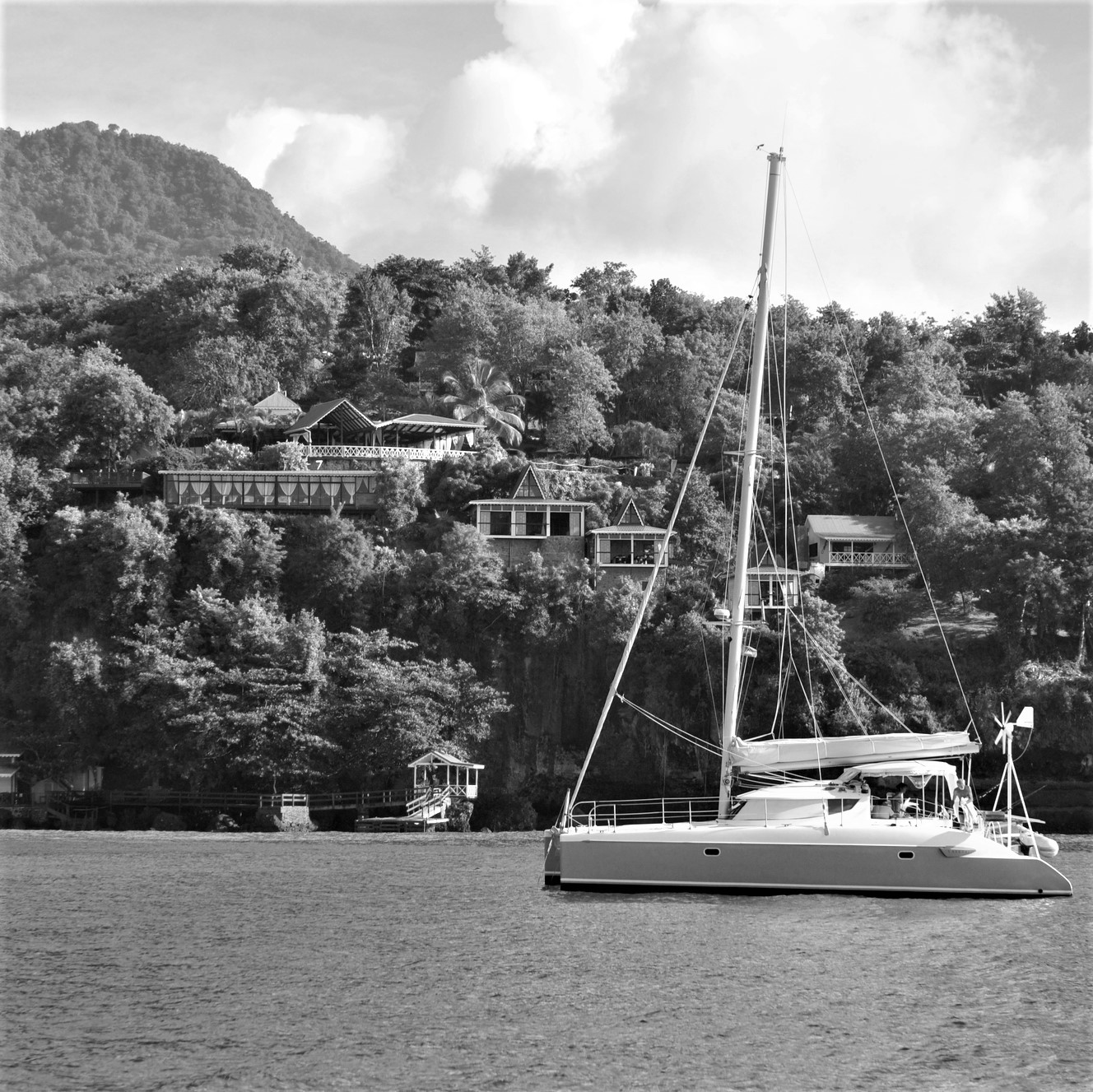 Dominica Island BW