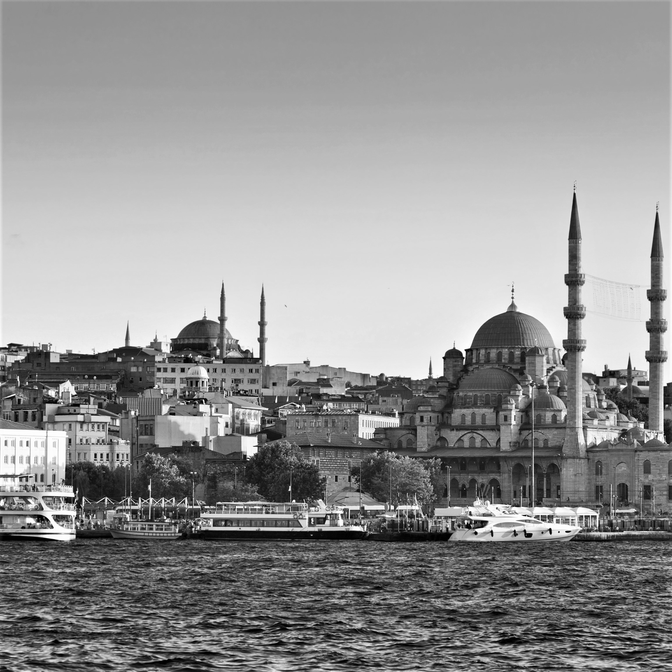 Turkey BW